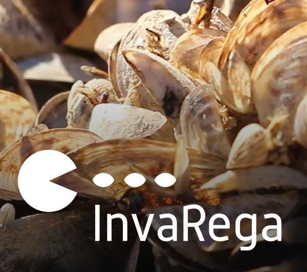 Proyecto InvaRega